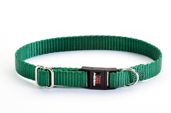 Picture 2:Partij halsbanden voor kat en hond